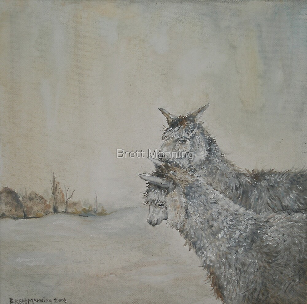 Two Llamas by brettisagirl