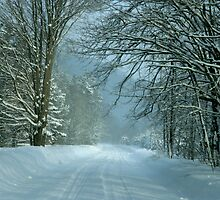 Winter Country Road by Vicki Oseland