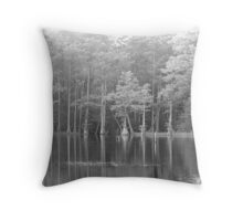 Mystery & Intrigue Throw Pillow