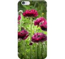 Smiling at the Sun iPhone Case/Skin