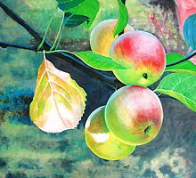 THE ORCHARD by evafriese015