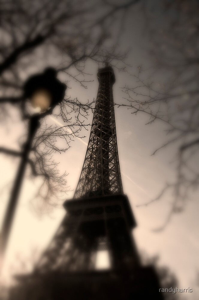 Tower Eiffel and Lamp Post by randyharris