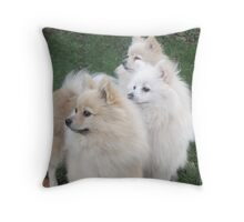 The three daughters of the Breed Record Holder Throw Pillow