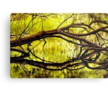 Plunge Brook - A View  Metal Print