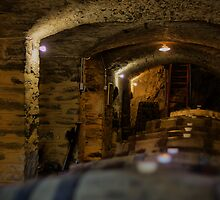 Seven Hill Cellars by JimFilmer