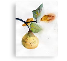 Watercolor illustration of pear Canvas Print