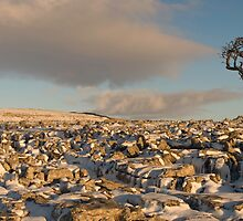 Snow Covered Limestone Pavement with Ingleborough in Distance Twistleton Scar by fineartphotos