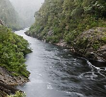 Franklin River in misty rain by tasadam