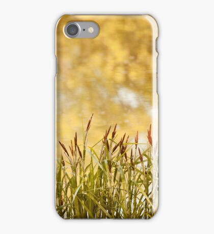 Decorative reeds and yellow reflection  iPhone Case/Skin