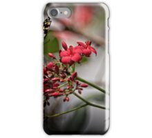 Butterfly Landing  iPhone Case/Skin