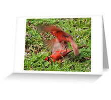 Fighting Cardinals  Greeting Card