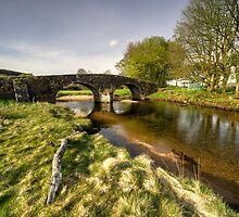 Dartmoor Bridge  by Rob Hawkins
