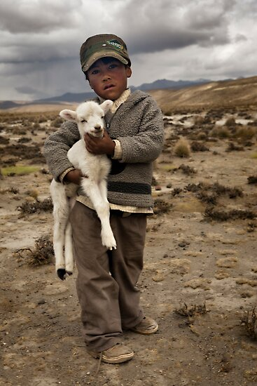 Little shepherd by Anthony Begovic
