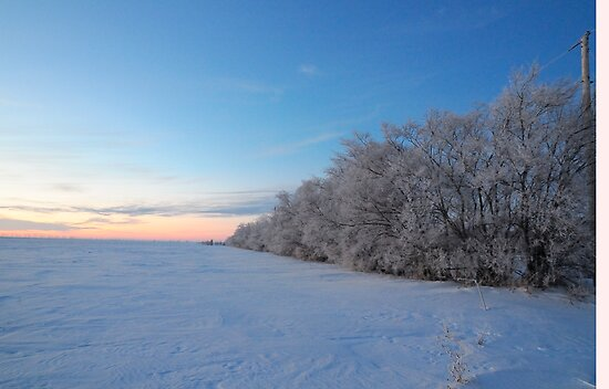 Frosted Sunset by Geoffrey