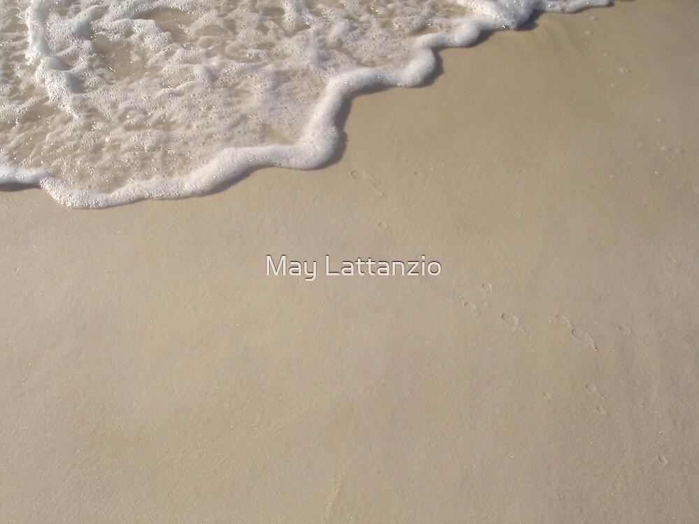 Lace by May Lattanzio
