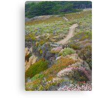 California Walk by Wstyd  Canvas Print