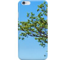 Far Reaching iPhone Case/Skin