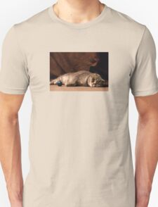 Chillcat Unisex T-Shirt