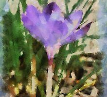 First Bulb of Spring by Kenneth Hoffman