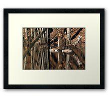 Camoflauged Framed Print