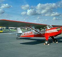 Auster J/2 Arrow G-AJAM by Colin Smedley