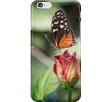 Butterfly Magic  iPhone Case/Skin