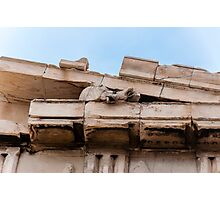 Parthenon pediment horses Photographic Print