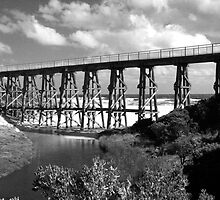 Kilcunda Trestle Bridge by John McNair