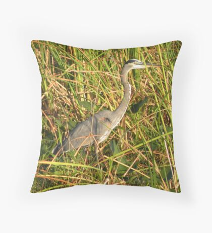 Everglades Hunter Throw Pillow