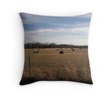 Hay! Throw Pillow