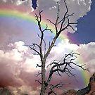Sedona Rainbow by George Lenz