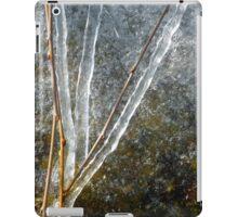 Ice Sculpture Abstract iPad Case/Skin