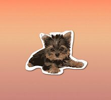 Yorkshire Terrier by PaolaZuni22