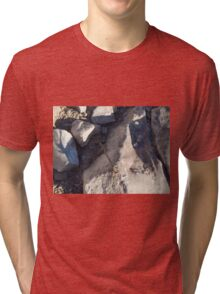 Basic Dragonfly Tri-blend T-Shirt