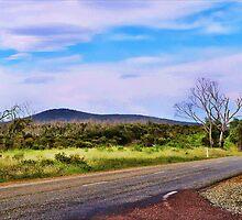 One Way Home by Daniel Rayfield