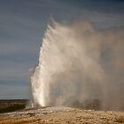 Yellowstone National Park by Olga Zvereva
