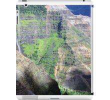 Waimea in Relief iPad Case/Skin