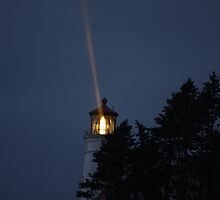 Heceta Head Lighthouse #2, Oregon Coast by aussiedi