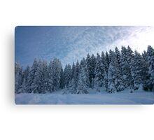 Alpine Wonderland Canvas Print