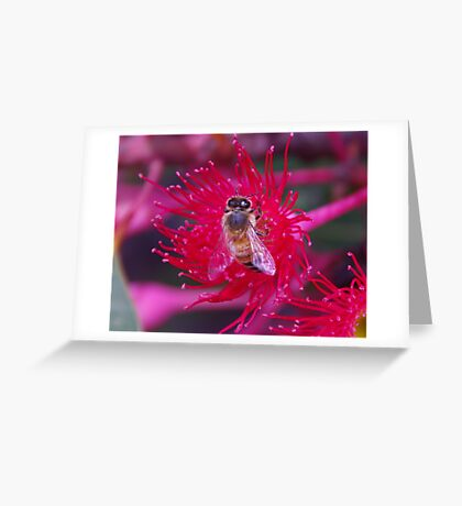 Red Bee Greeting Card