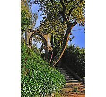 Path to Nowhere Photographic Print