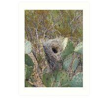 Bird Nest in Cacti Art Print