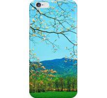 SPRING DOGWOOD,CADES COVE iPhone Case/Skin