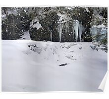 Cayuga Falls Hidden Under Winter Camouflage Poster