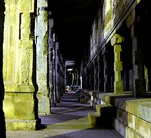 Madurai Temple at night by Tamara Travers