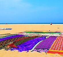Saris drying on the beach by Tamara Travers