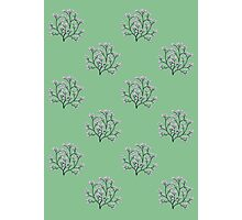 Cherry Blossom Tree Pattern Photographic Print