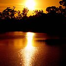 Golden Waters by Clive