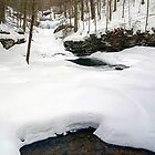 Waters Meet Under Ice & Snow by Gene Walls