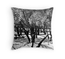 Riverfront Park Throw Pillow
